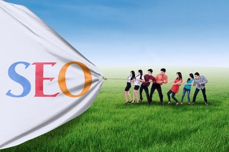Developing your business with SEO Experts v. SEO Team